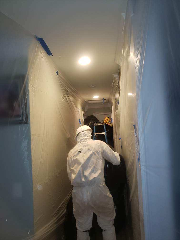 attic-mold-remediation-pg-county-maryland-superior-damage-restoration_